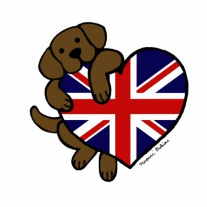 chocolate labrador uk flag