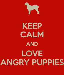 keep-calm-and-love-angry-puppies